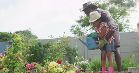 kutuları : Side view of an African American man and his mixed race daughter enjoying time at a garden together, kneeling, planting, a man is holding a girl who is watering the plants with a watering can, in slow motion Stok Video