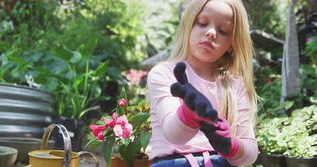 watering can : Front view of a Caucasian girl with long blonde hair enjoying time in a sunny garden, putting on her pink gardening gloves in preparation for gardening, in slow motion