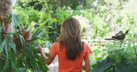 経験 : Rear view of a Caucasian woman with long brown hair wearing an orange t shirt, walking in a sunny garden, touching the leaves of plants and using a tablet computer, in slow motion