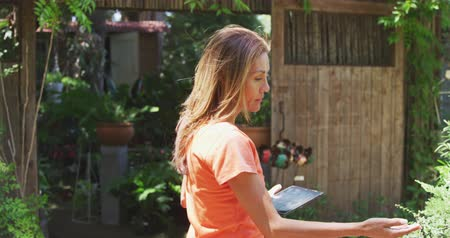 keşif : Side view of a Caucasian woman with long brown hair wearing an orange t shirt, walking in a sunny garden, touching the leaves of plants and using a tablet computer, in slow motion Stok Video