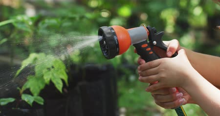 spraying : Side view mid section close up of the hands of a Caucasian woman and her daughter in a sunny garden, using a garden hose together to water the plants, in slow motion