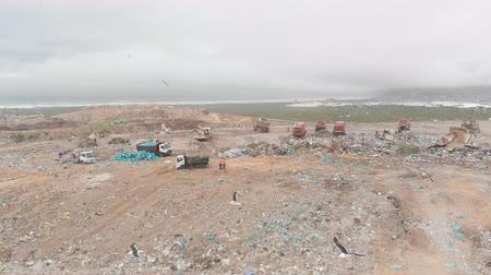 aquecimento global : Drone shot of birds flying over vehicles working, clearing and delivering rubbish piled on a landfill full of trash. Global environmental issue of waste disposal. Stock Footage