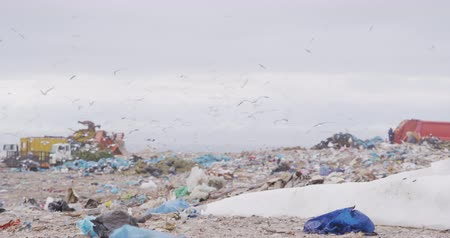 buldózer : Flock of birds flying over vehicles working and clearing rubbish piled on a landfill full of trash with cloudy overcast sky in the background in slow motion