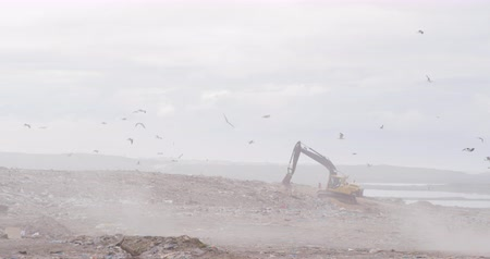 escavadora : Flock of birds flying over digger working and clearing rubbish piled on a landfill full of trash with cloudy overcast sky in the background in slow motion Stock Footage