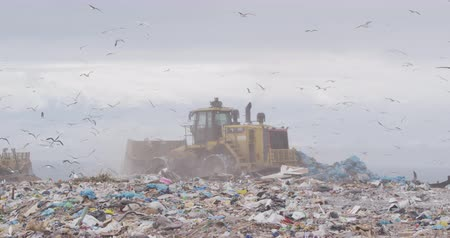 aterro : Flock of birds flying over vehicle working and clearing rubbish piled on a landfill full of trash with cloudy overcast sky in the background in slow motion
