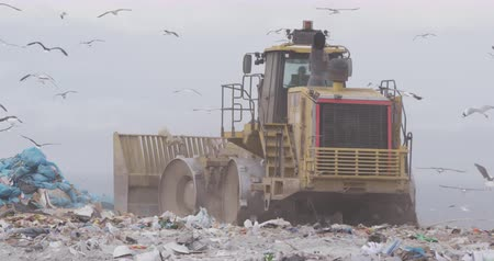 mensen massa : Flock of birds flying over vehicle working and clearing rubbish piled on a landfill full of trash with cloudy overcast sky in the background in slow motion