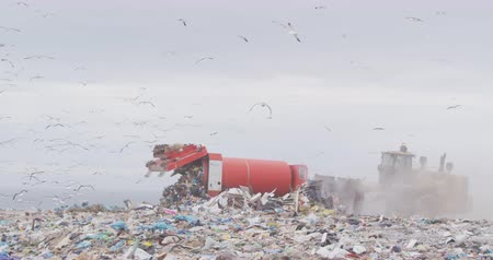 buldozer : Flock of birds flying over vehicles working and clearing rubbish piled on a landfill full of trash with cloudy overcast sky in the background in slow motion