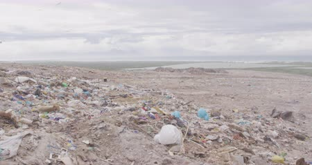 изобилие : Flock of birds flying over rubbish piled on a landfill full of trash with stormy overcast sky in the background in slow motion