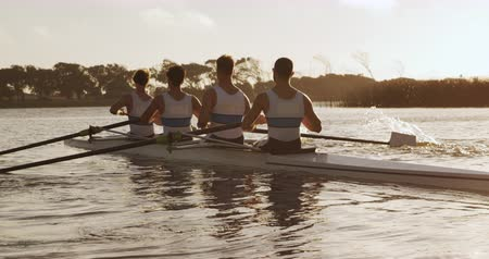 adam : Rear view of four Caucasian male rowers, during a rowing practice, sitting in a boat, rowing, during a sunset, in slow motion Stok Video