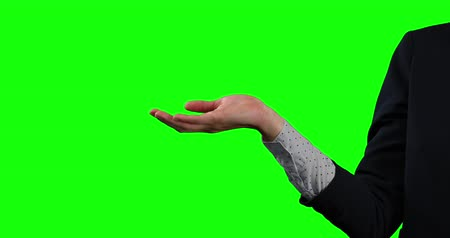 firma : Side view mid section of a Caucasian businesswoman wearing smart clothes, holding her hand out as if holding an object on green screen background