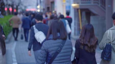 pedestrians : Tokyo- 03 April 2019 People Cross The Street In A Business District Of Tokyo, Stock Footage
