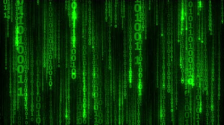 code : cyberspace with digital falling green lines, abstract animated background, seamless loop Stock Footage