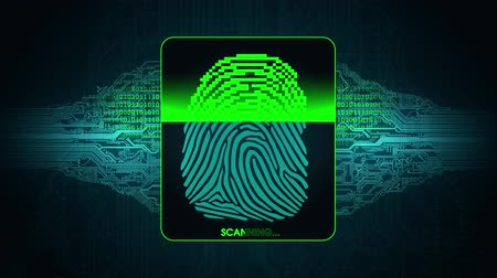 hozzáférés : the process of fingerprint scanning - digital security system, result of the fingerprint scan access is granted