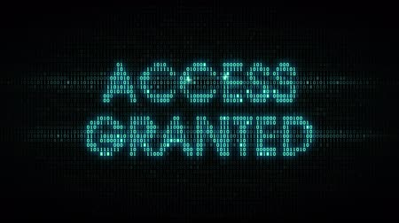 hozzáférés : The words access granted consisting of binary code, the result of the operation access control system