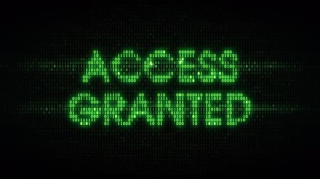 hozzáférés : The words access granted consisting of binary code, the result of the operation access control system, security, data protection Stock mozgókép