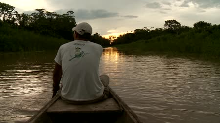 veslování : Paddeling With Canoe On The Amazon River in front of the sunset, South America, Peru Dostupné videozáznamy