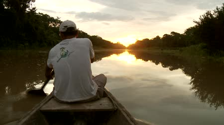 canoa : Paddeling With Canoe On The Amazon River in front of the sunset, South America, Peru Vídeos