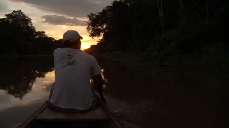 evezés : Paddeling With Canoe On The Amazon River in front of the sunset, South America, Peru Stock mozgókép