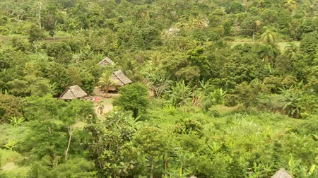 temprature : Rain Forest from Abaove with little Village