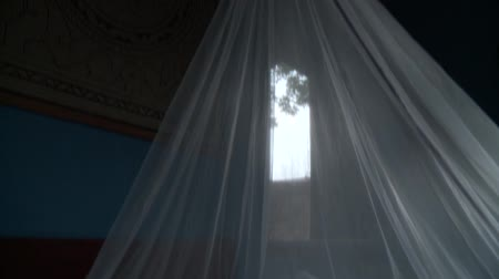 Woman Lying under Mosquito Net in Tropical Area, South America Stock Footage
