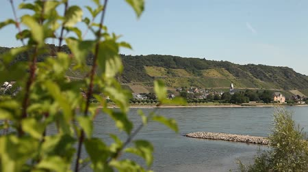 margem do rio : River Rhine in germany