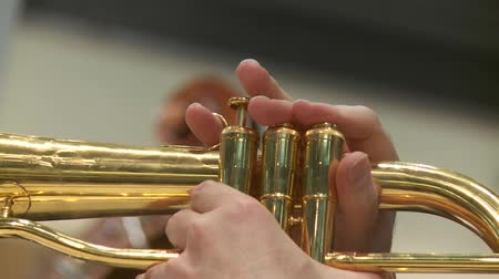 trombeta : video footage of a trumpet player Stock Footage