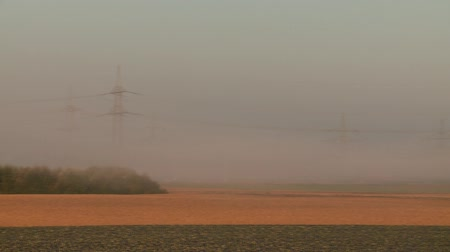 authorities : video footage of fog in the morning Stock Footage