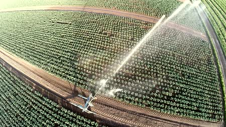 irrigação : Aerial video footage ? Watering a acre in summer