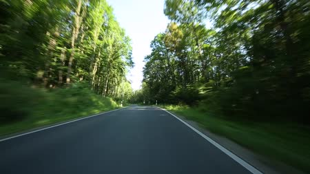 prędkość : P.O.V. Video footage of driving in a forest on a highway in germany