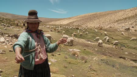 latin amerika : Countrywoman spinning wool in the Andes of Peru. November 2010 ? Farmer woman spinning Alpaca-Wool in the Andes of Peru, near by Arequipa Stock mozgókép