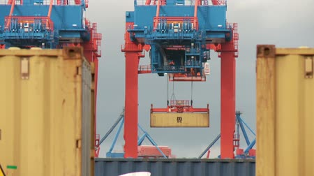 obchody : video footage of a container terminal in Hamburg