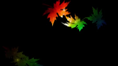 energický : Rainbow Leaves features falling maple leaves on a black background used as a mask to reveal abstract rainbow colors beneath.
