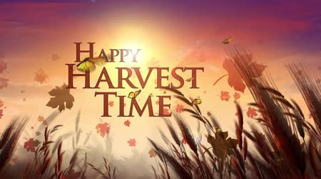 owady : Happy Harvest Time Field with Butterflies and Leaves features an autumn field with butterflies and a sun in the background and animated Happy Harvest Time message Wideo