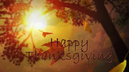 подсолнухи : Happy Thanksgiving Leaves Through Trees features a camera looking at the sky through tree limbs and falling leaves and an animated Happy Thanksgiving message Стоковые видеозаписи