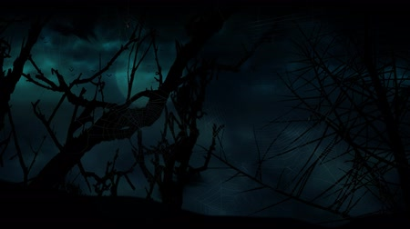 hátborzongató : Bat Moon Trees Storm 4K Loop features the silhouette of dead tree branches and spider webs in the foreground with storm clouds and lightning in the back in a loop