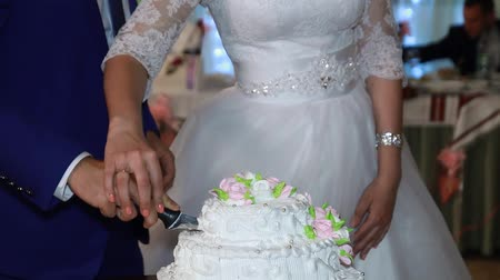 weddings : Bride and Groom at Wedding Reception Cutting the Wedding Cake Stock Footage