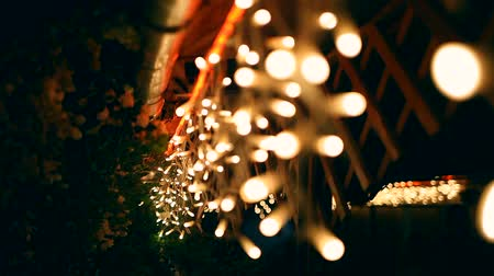ziyafet : Decorative outdoor string lights hanging on tree in the garden at night time Stok Video