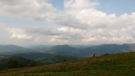 karpaty : Bride and groom on the mountain in the Carpathians, aerial video