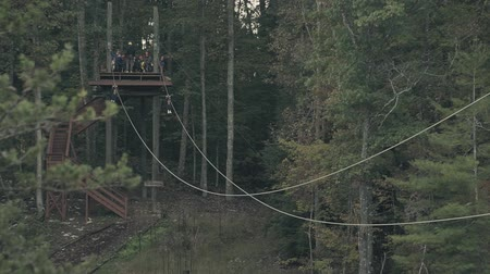 harness : Men ride a zipline attraction in the woods