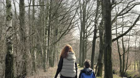 Mother with son on walk. Woman with child walks through countryside. Walking path with tree colonnade in natural parkland. Beautiful path leading alley. Center row composition, sunny spring day Stok Video