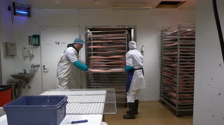 fishing industry : Working Team In A Seafood Processing Factory. A man and woman puts salmon fillets into the oven for smoking.