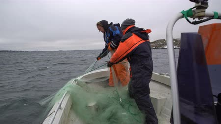 fishermen : Fishermen take out the network with the catch in the Baltic sea.
