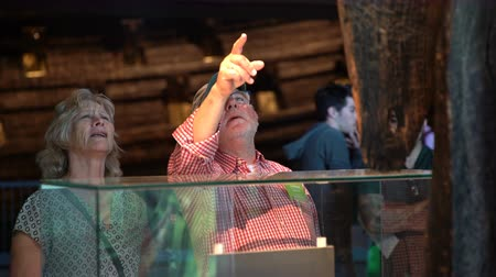 vasa : STOCKHOLM, SWEDEN - MAY 31, 2016: Many visitors in the Maritime Vasa Museum in Stockholm. Dolly shot.