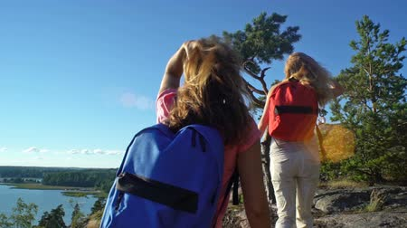 realizar : Two active young women with backpacks are climbing cliff. Friends help each other to climb the high rock. Nordic landscape with pine trees, cliffs and sea.