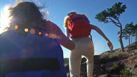 друзья : Two active young women with backpacks are climbing cliff. Friends help each other to climb the high rock. Nordic landscape with pine trees, cliffs and sea.