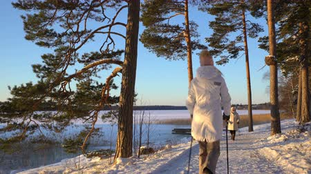all ages : Nordic walking - winter sport for all ages. Active people different ages hiking in snowy forest. Scenic peaceful scandinavian landscape. Stock Footage