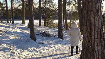 finlandiya : Nordic walking - winter sport for all ages. Active people different ages hiking in snowy forest. Scenic peaceful scandinavian landscape. Stok Video