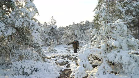 finlandiya : Tourist in the winter forest. Forest in snow near the Espoo. Finland.