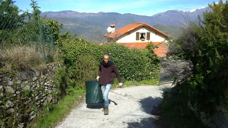 biberiye : Collecting rosemary in the Alps. The Italian man carries a basket of leaves and flowers of medicinal herbs in the mountains in the north of Italy. Stok Video