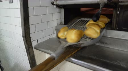 vdolky : Traditional Italian family bakery. A female baker takes hot buns out of the oven. Real people.